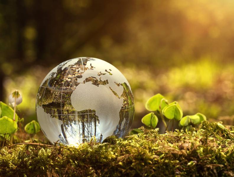 Small gloss globe sitting on green moss