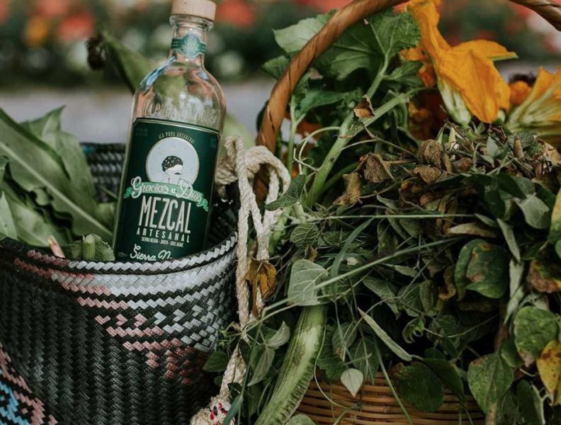 Mezcal bottle with green leaves