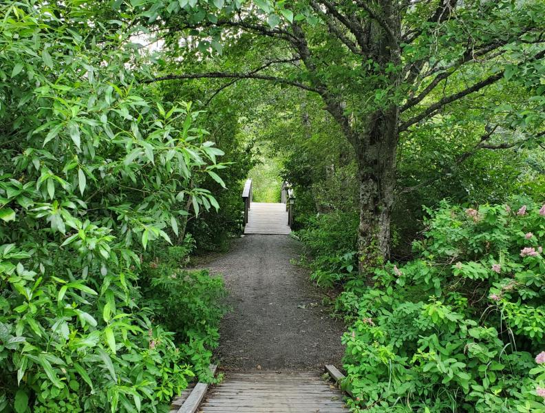 Edwards Garden