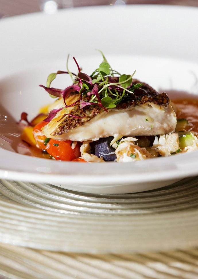 close up on seared fish in tomato sauce topped with micro greens in white bowl.