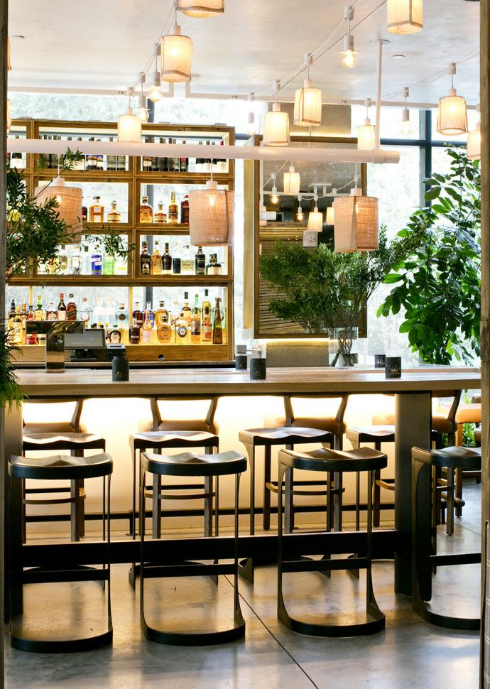 Bar stools lined against an elegant wooden bar