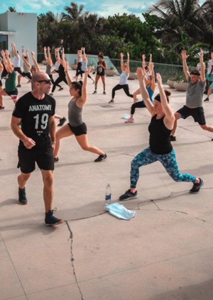 anatomy group workout