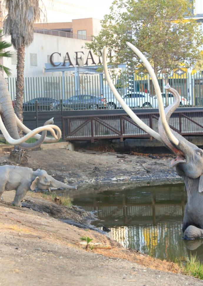 Things to do 1 hotel west hollywood tar pits