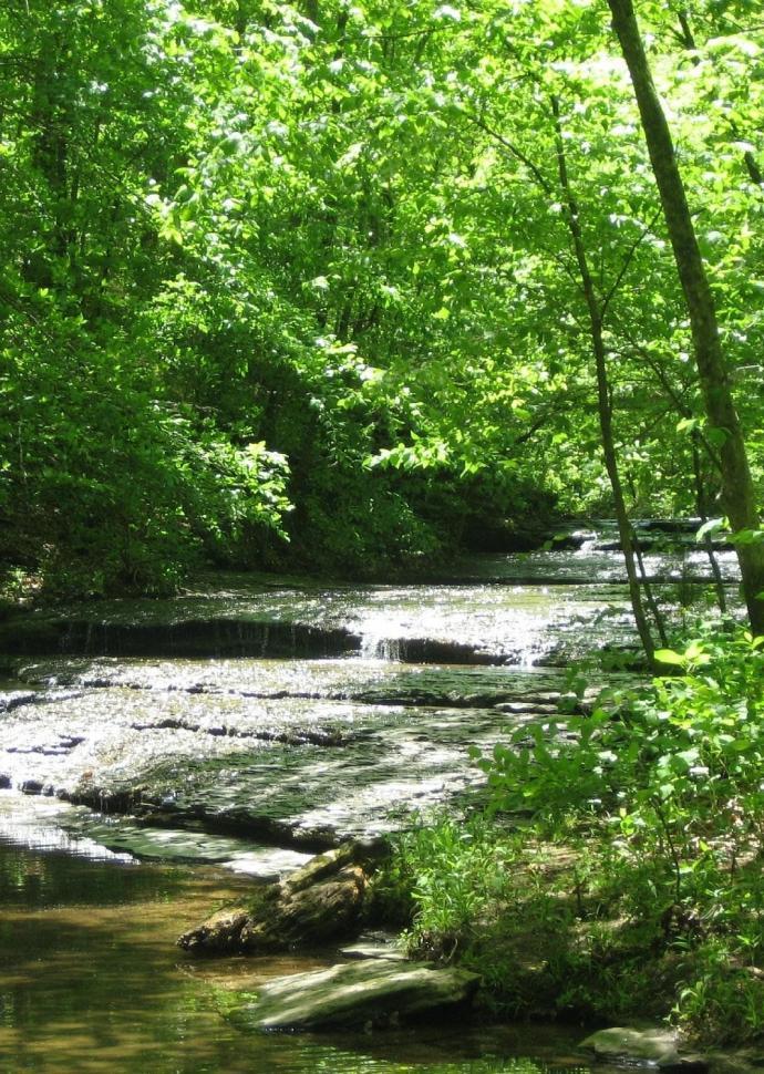 beaman park nature center
