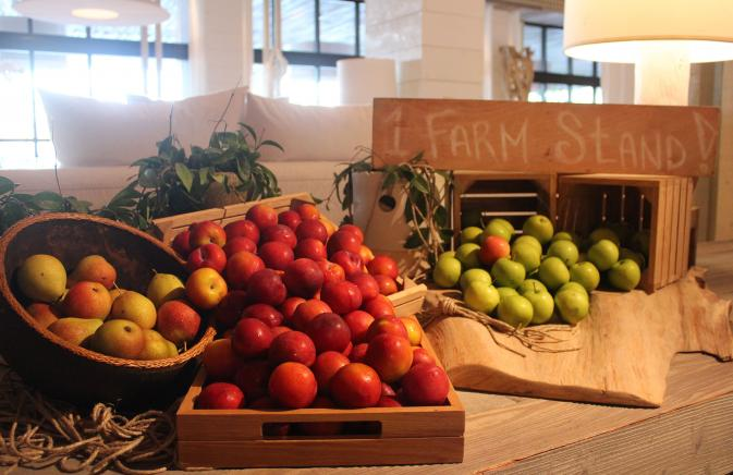 Display of apples and mangos at the South Beach Lobby farmstand