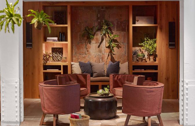 Leather armchairs surrounded by plants and sleek wooden shelving