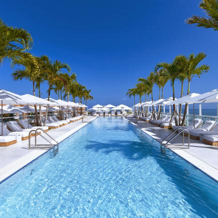 A long blue rooftop pool surrounded by palm trees and lounge chairs