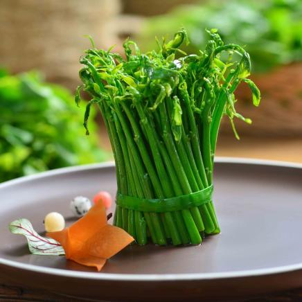 Wild vegetable-Green House