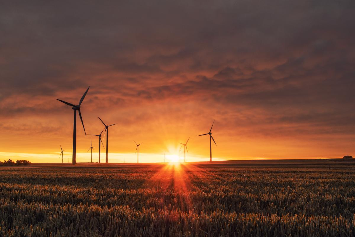 Breaking the Language Barrier in the World of Renewable Energy, by E2 Fellow Marlene Plua