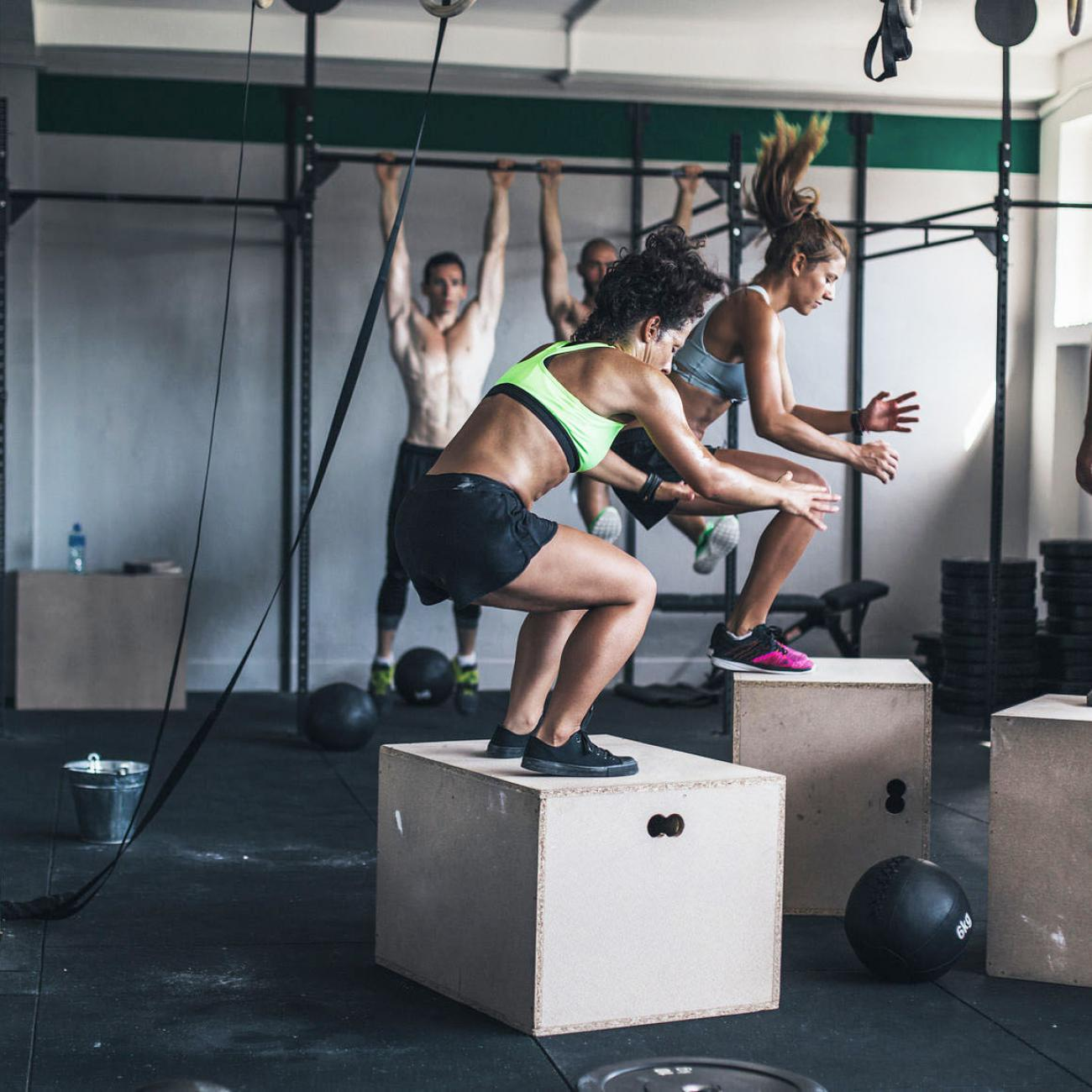 anatomy box jump